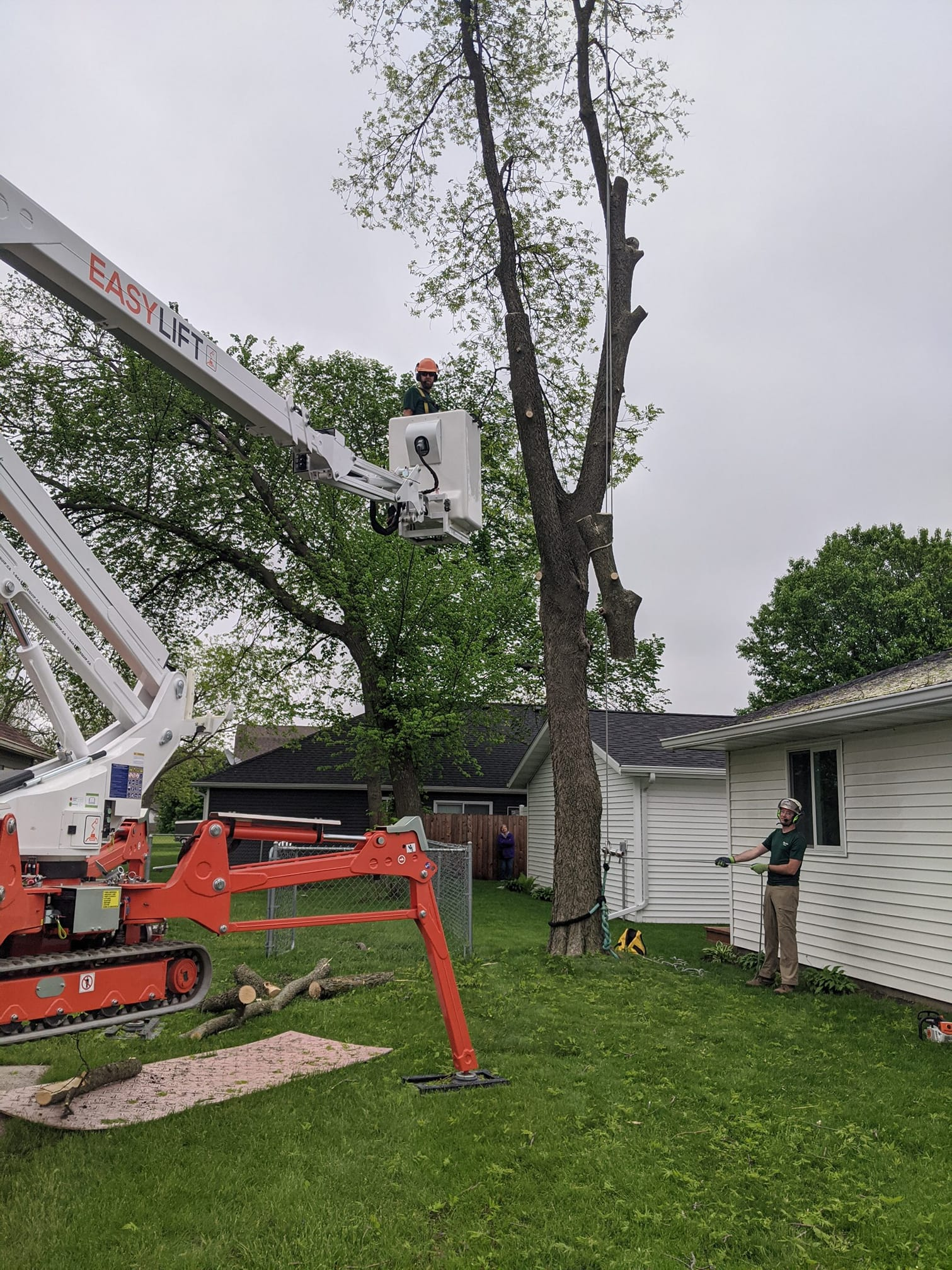 The tree care industry in the U.S. loves Easy Lift spiders!